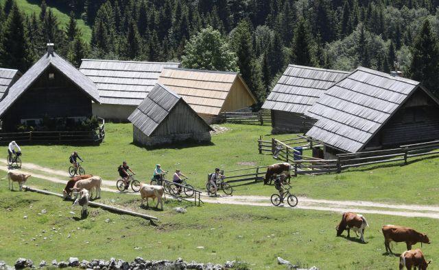 FOTO: Dejan Javornik/Slovenske novice