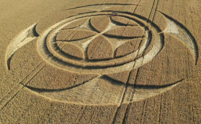 V bližini kanadskega mesta Vimy je lokalni kmet odkril nenavadne kroge na pšeničnem polju. FOTO: Pascal Rossignol/Reuters