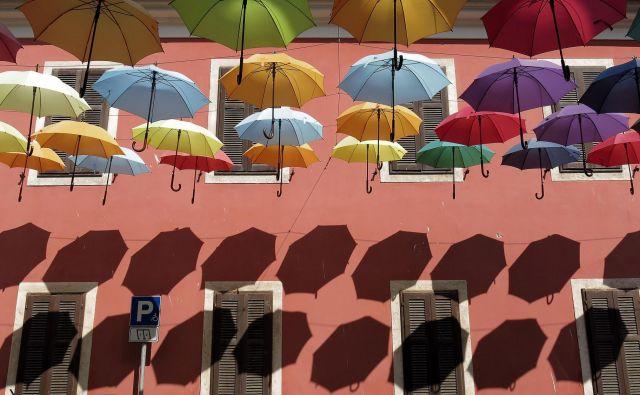 Novigrad bi se rad razvil v butično destinacijo. FOTO: Blaž Samec/Delo