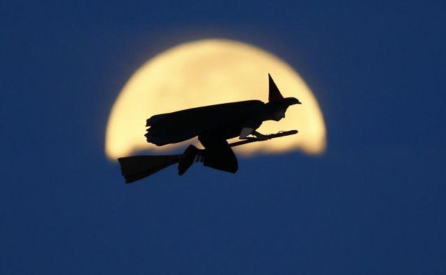 Zgodba egipčanske čarovnice tudi kaže srhljivo senčno stran krilatice, ki se običajno pripisuje ameriškemu pop umetniku Andyju Warholu: da bodo nekoč vsi bili svetovno slavni za 15 minut. FOTO: Mike Blake/Reuters
