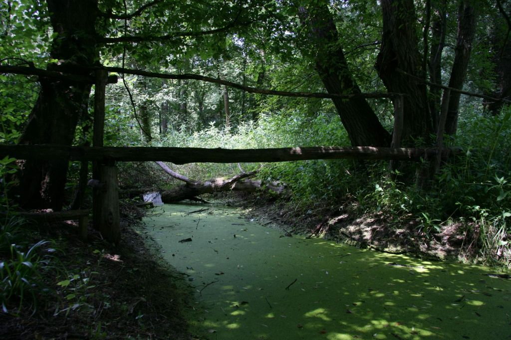 FOTO:Evropski milijoni za naravo