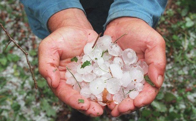 Tudi manjša zrna toče lahko naredijo veliko škode, na poljih in v sadovnjakih. FOTO:Igor Modic/Delo