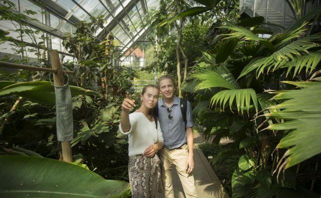 Obiskovalca med ogledom tropskega rastlinjaka. Zaradi strahu pred virusom je obiskovalcev še vedno manj kot pred epidemijo. FOTO: Jure Eržen/Delo