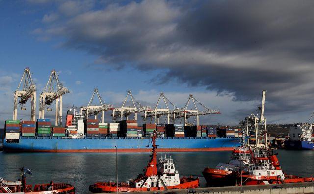 Prihodnji teden se bo v Luki Koper zasidrala ladja z potrjenima okužbama na krovu. FOTO: Tomi Lombar/Delo