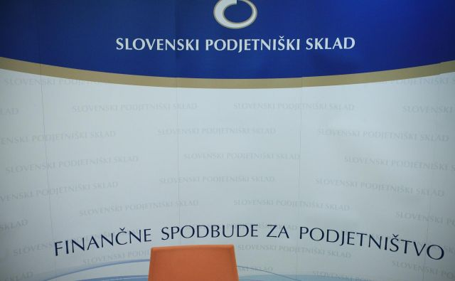 Sredstva Slovenskega podjetniškega sklada naj bi zadostovala za podporo več kot 150 projektov digitalne transformacije v MSP. FOTO: Uroš Hočevar/Delo