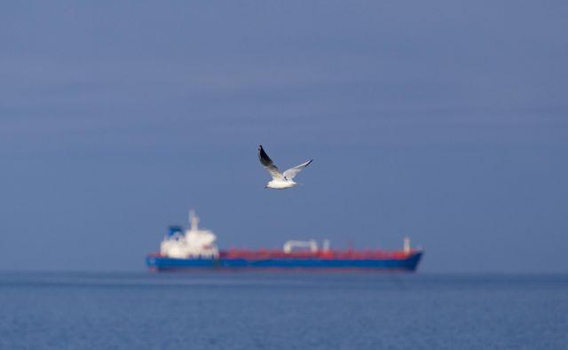 Na ladji grškega ladjarja sta doslej potrjeni dve okužbi s koronavirusom. Fotografija je simbolična. FOTO: Jože Suhadolnik/Delo