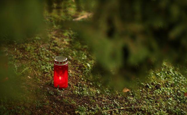 Fotografija je simbolična. FOTO: Jure Eržen/Delo