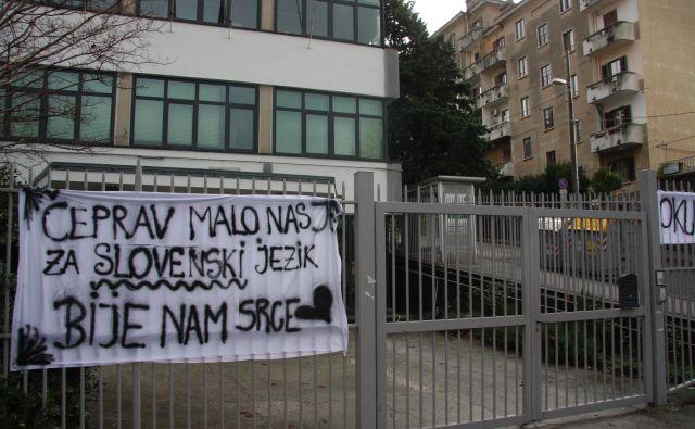 Protest slovenskih dijakov v tržaškem liceju Franceta Prešerna leta 2010. Foto Boris Šuligoj