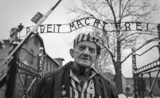 Nekdanji taboriščnik Ihor Malicki v Auschwitzu, januar 2015. FOTO: Voranc Vogel/delo