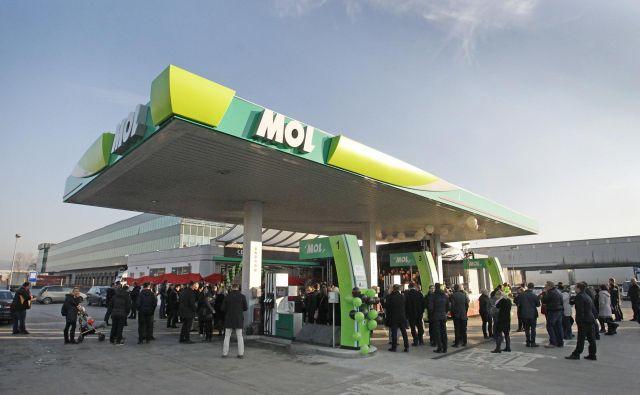 Mol je edini novi trgovec, ki se mu je uspelo v Sloveniji nekoliko razširiti. FOTO: Leon Vidic/Delo