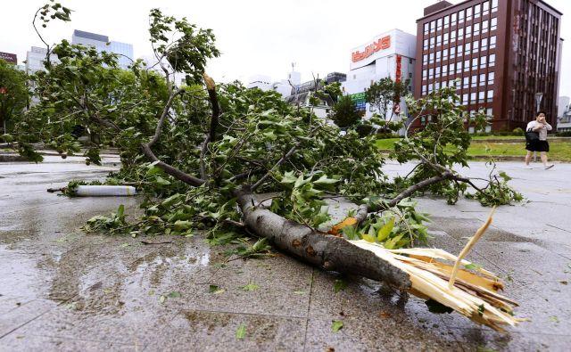 Na Japonskem je tajfun lomil drevesa in sprožal zemeljske plazove, tako kot na posnetku iz mesta Fukuoka. FOTO: Kyodo Kyodo/Reuters