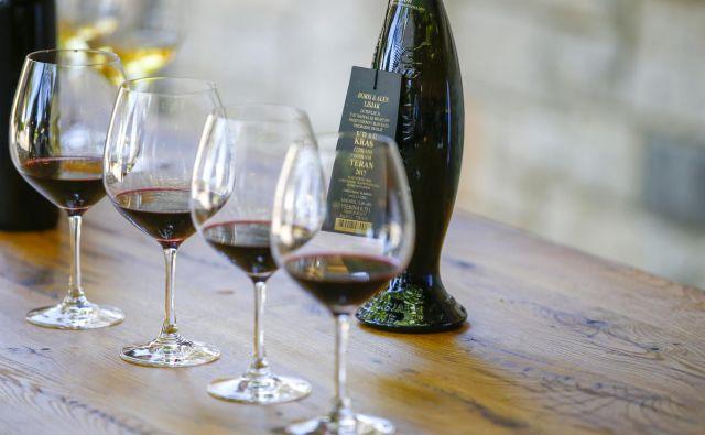 Za Slovenijo je bil sporen delegirani akt, s katerim je evropska komisija dovolila Hrvaški rabo imena teran kot sorte vinske trte za vino z zaščiteno označbo porekla Hrvatska Istra. FOTO: Matej Družnik/Delo
