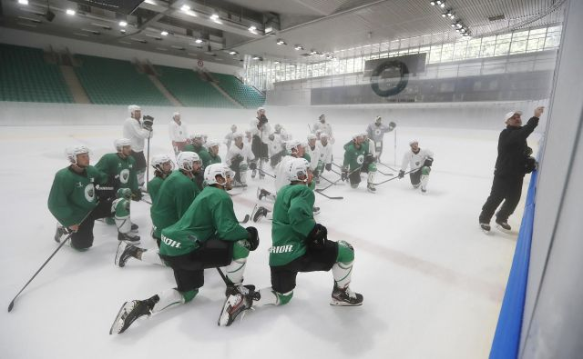 Ljubljančani so uspešno začeli poletno hokejsko ligo na Bledu. FOTO: Leon Vidic