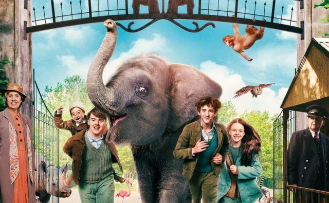 Živalski vrt Foto Tv Slo