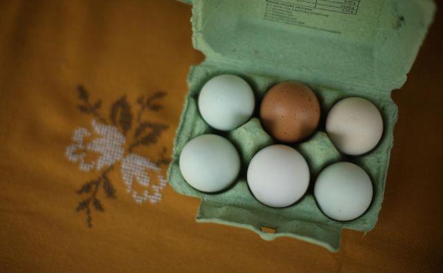 Osnovni posel Meje Šentjur je pridelava jajc, kjer pa jim tržni delež pada. FOTO: Jure Eržen/Delo