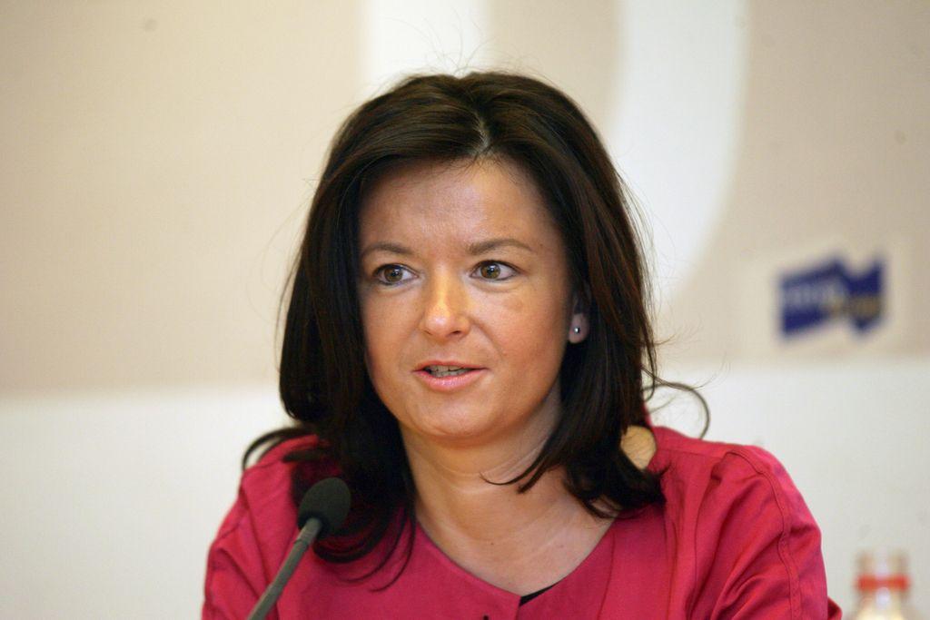 Fajonova BiH posvarila pred ukinitvijo brezviznega režima