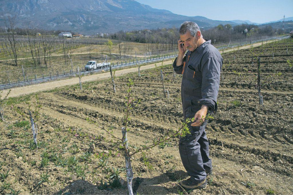 Tudi kmetijstvo mora varčevati, a ne za vsako ceno