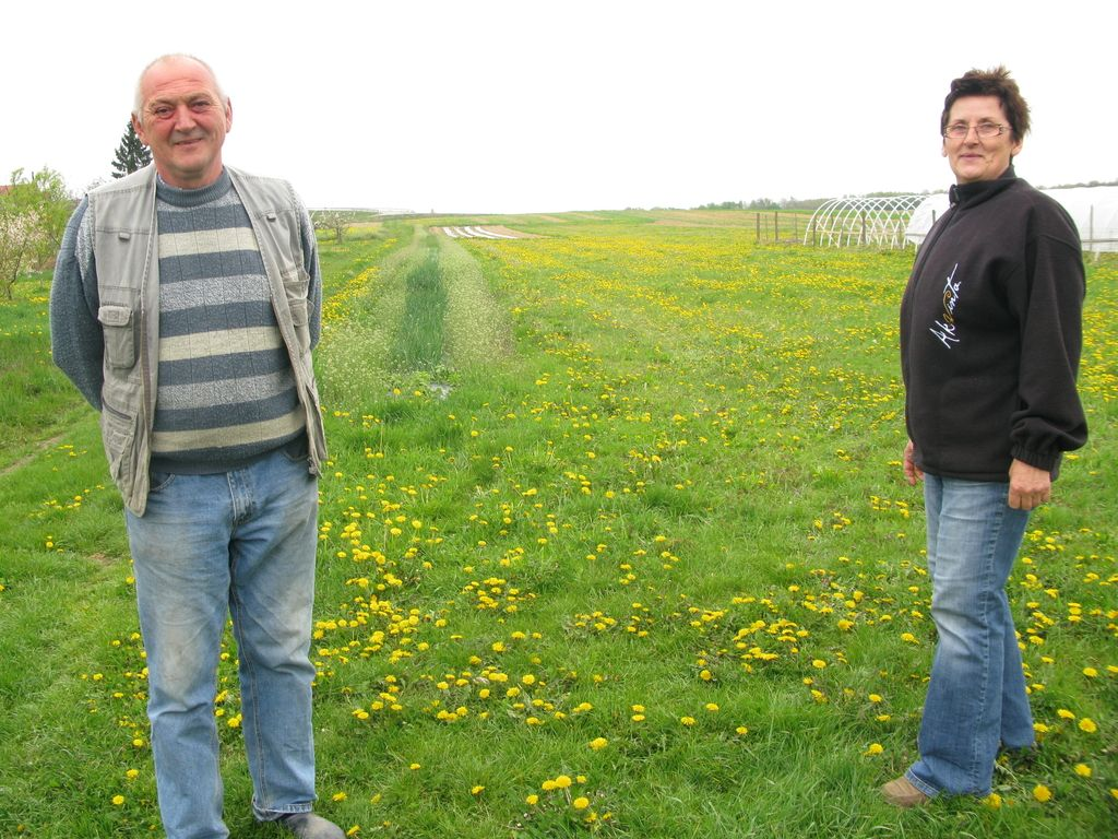 Partnersko kmetovanje iz Štajerske v Pomurje