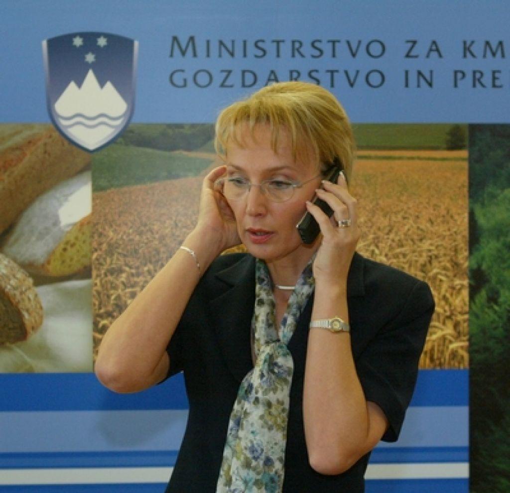 Afera Bulmastifi: očitki o domnevnih pritiskih na direktorico Vursa