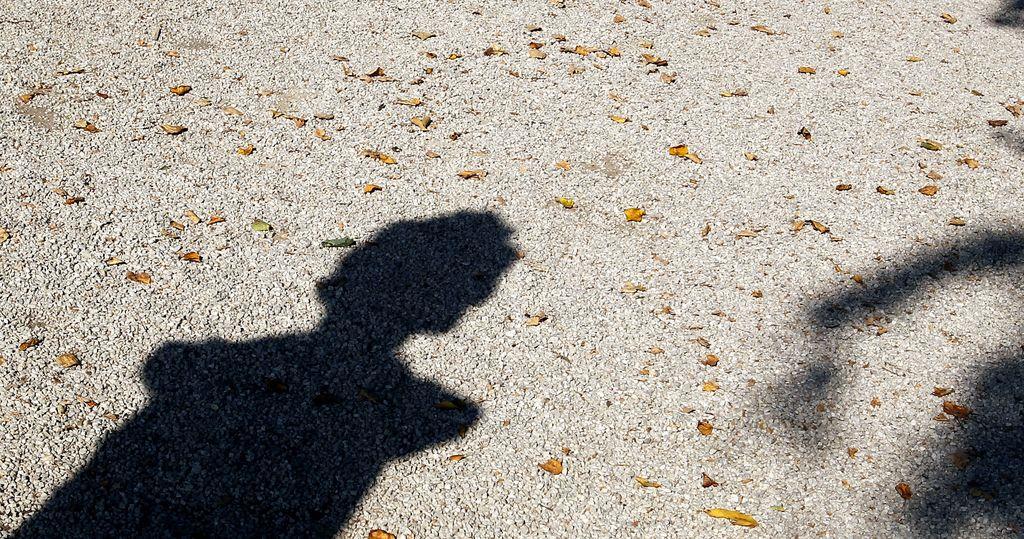 Cankar nazaj na Rožnik, Njegoš v prenovljeni park