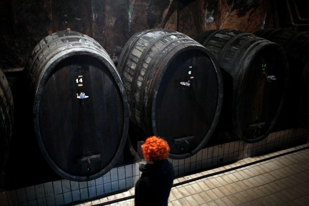 Mariborski vinarji si želijo v mariborske lokale