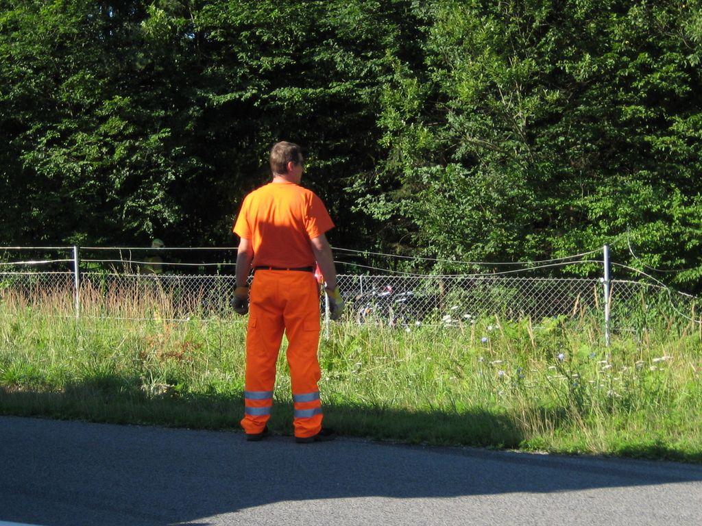 Voklo: voznik čez ograjo v gozd