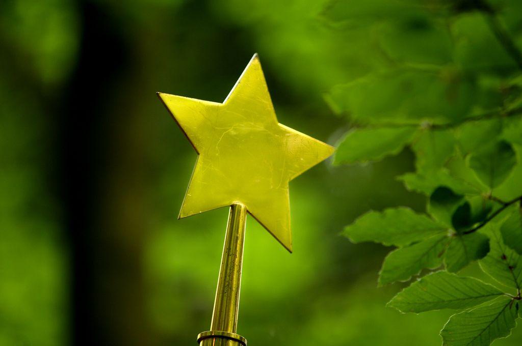 Slovenec Slovencu Slovenec ali prikladna spornost zvezde