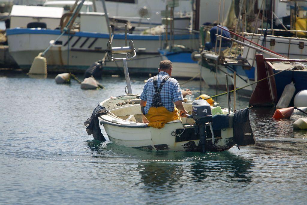 Za slovensko ribištvo 32,6 milijona evrov do leta 2020