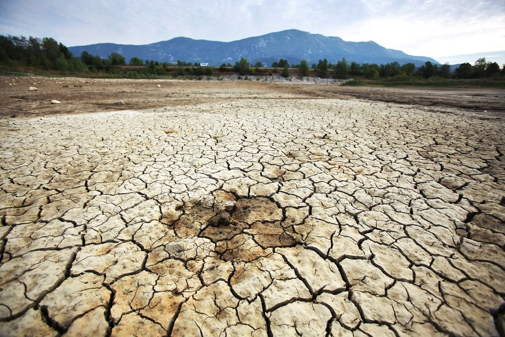 Odraz suše na Vipavskem