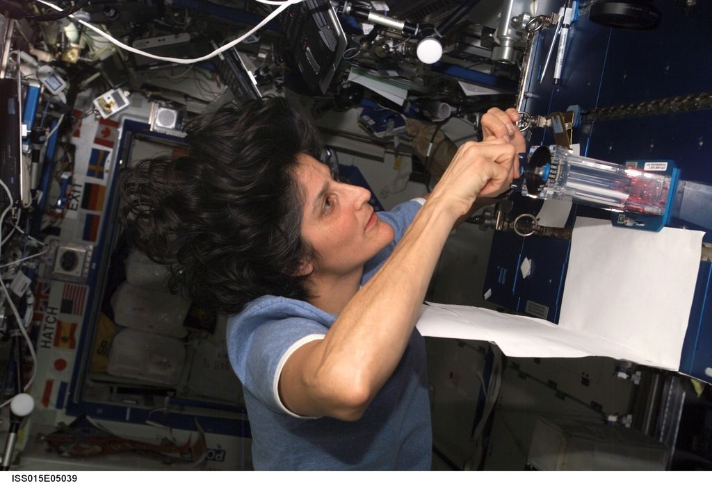 Sunita Williams na čelu mednarodne vesoljske postaje