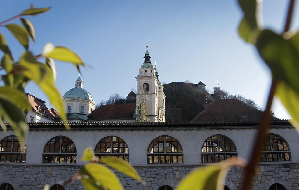 Ljubljana 2013: Slovo od lisic