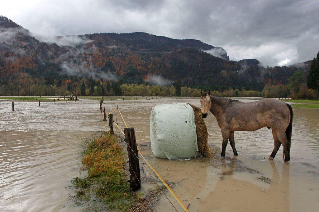 Prizadeti v novembrskih poplavah čakajo na pomoč države