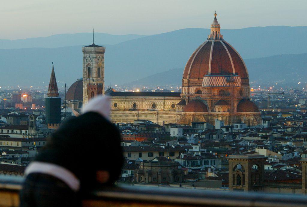 Je moral Brunelleschi poznati uradne liste iz tistih časov?