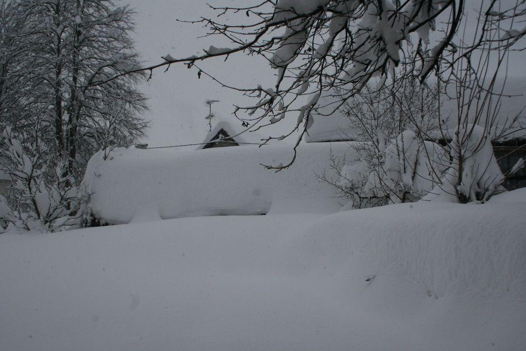 Na Kočevskem zapadlo več kot pet metrov snega
