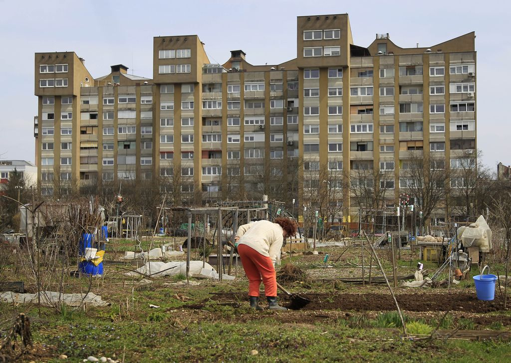 Občine spodbujajo urbane vrtičkarje