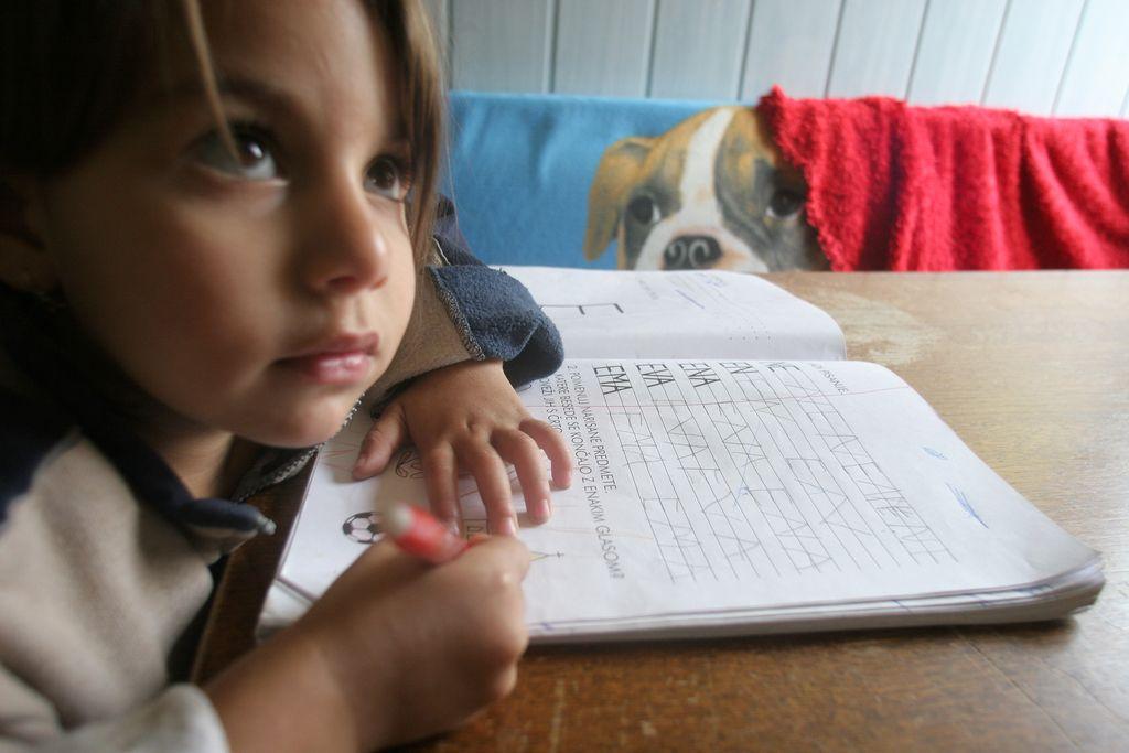 Izobraževanje na domu: »Pomemben del razvoja se zanemarja«