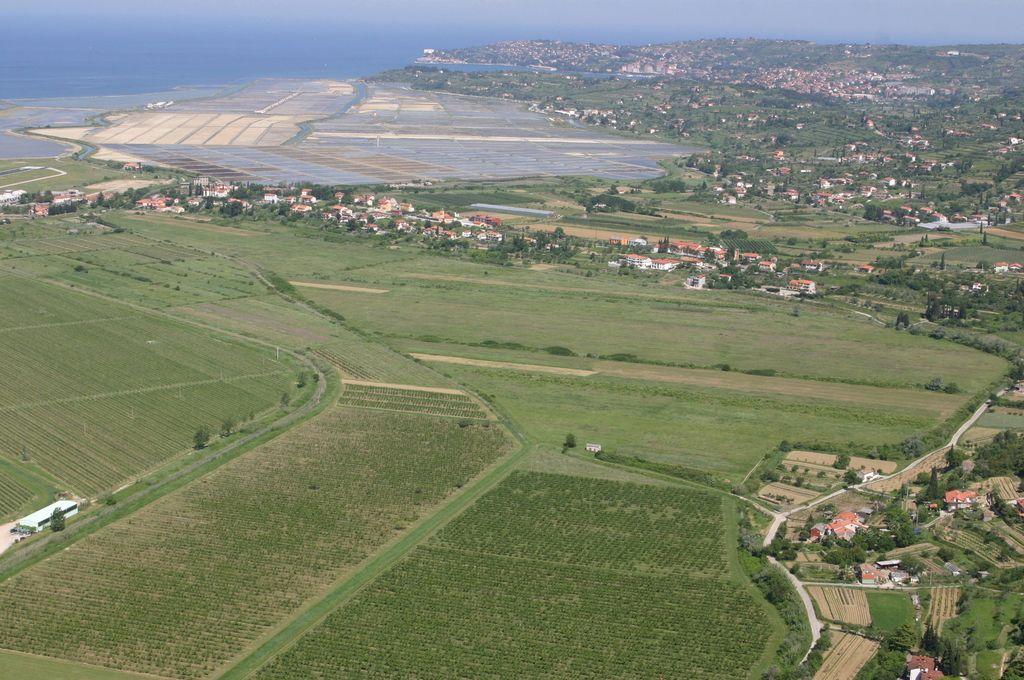 Zemlja v Sečovljah primerna za kmetovanje