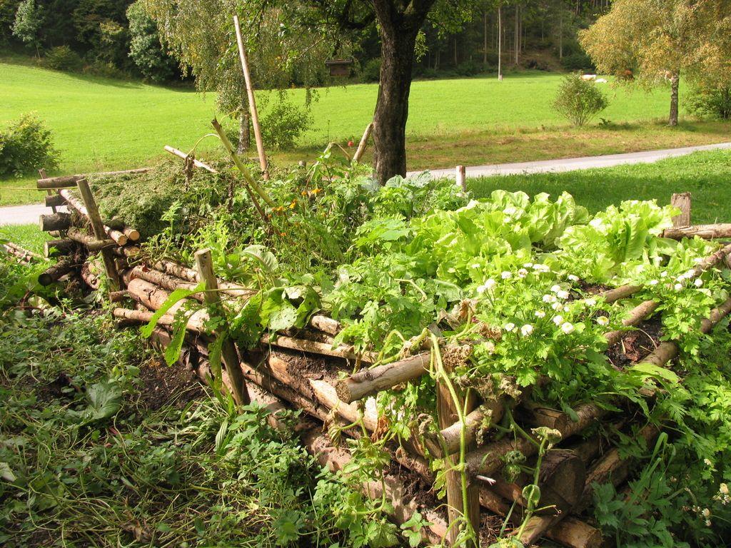 Deloindom: Kompostiranje - Na ekološkem vrtu nepogrešljivo
