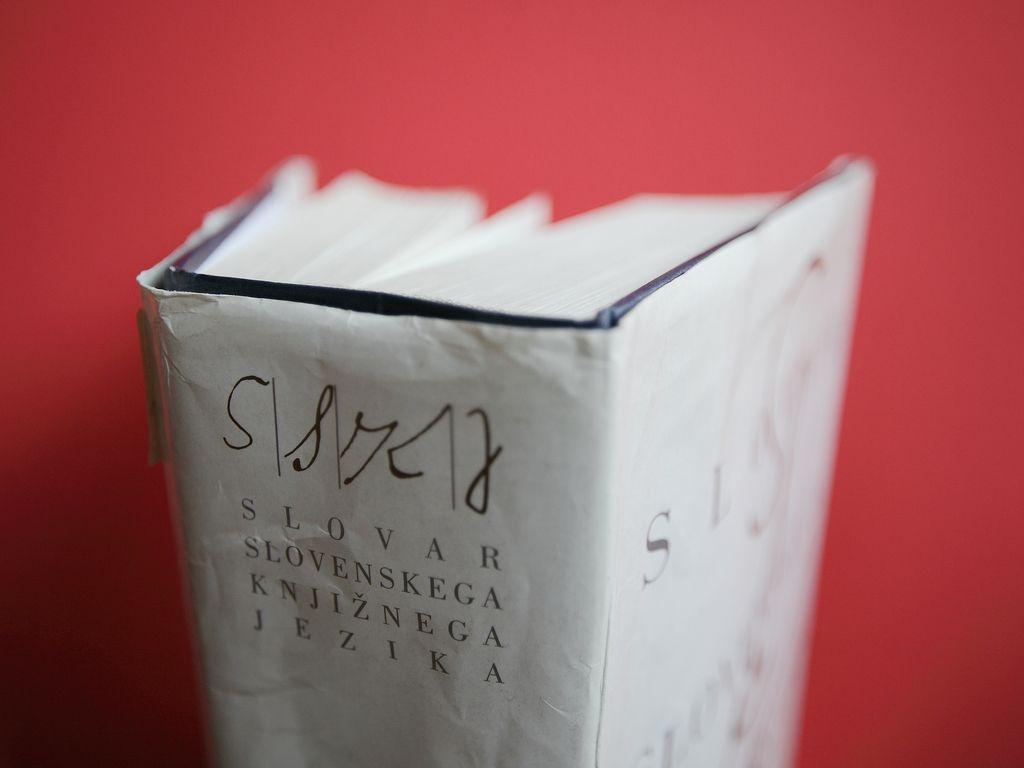 Kako se lotiti novega slovarja slovenskega jezika?