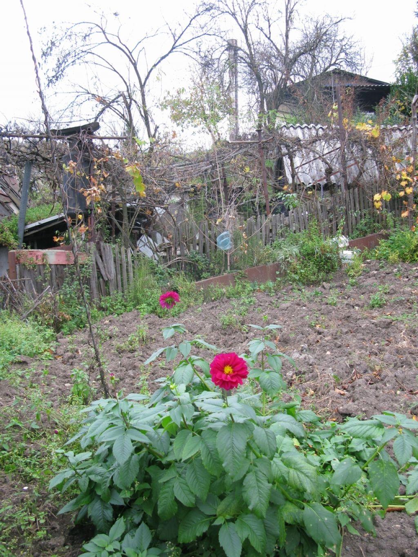 Tla v Zasavju so onesnažena, a strokovnjaki ne povedo, kje