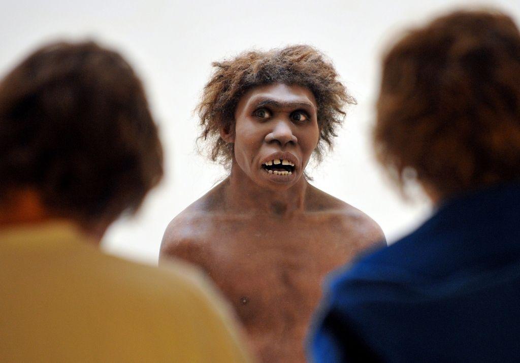Naš pradedek neandertalec