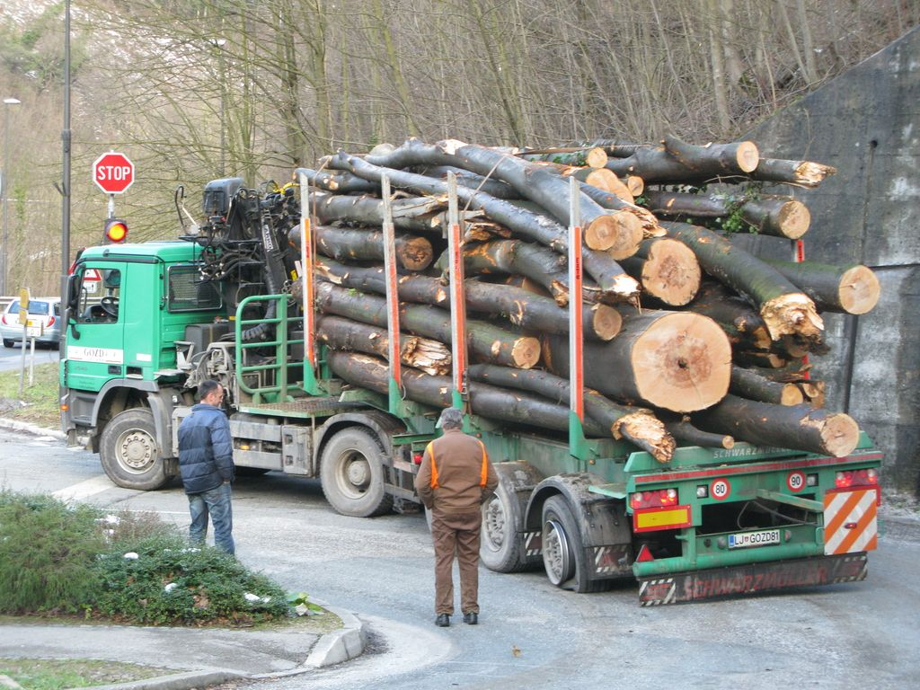 Žled uničil 42 odstotkov koroškega gozda