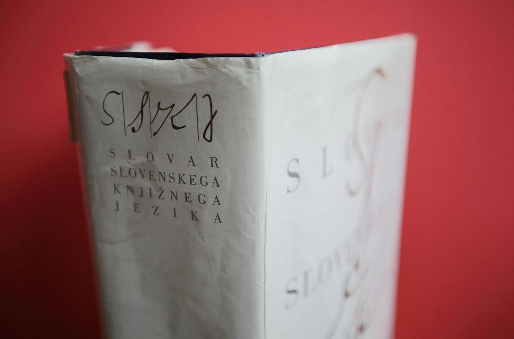 Sanje o slovarju, na katerega bi bili ponosni
