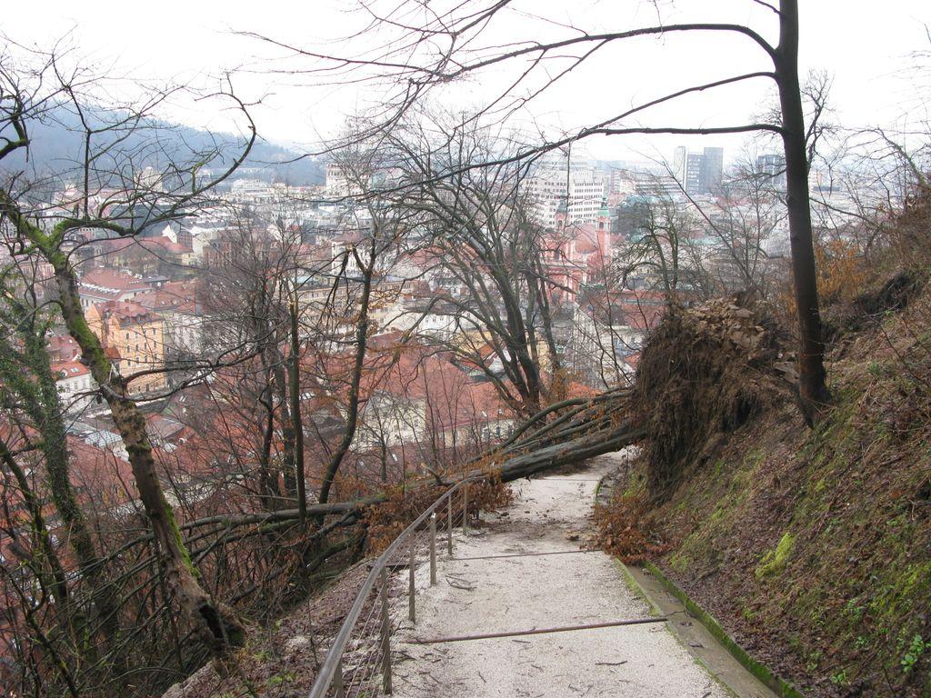 Sanacija ljubljanskih ulic in parkov po načrtu, Gradu pa ne