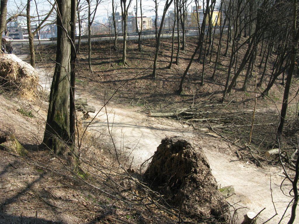 Preoptimističen načrt čiščenja Gradu po žledu