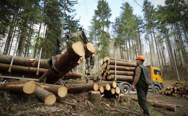 Nalaganje in transport hlodovine v Snežniških gozdovih 7.aprila 2014.