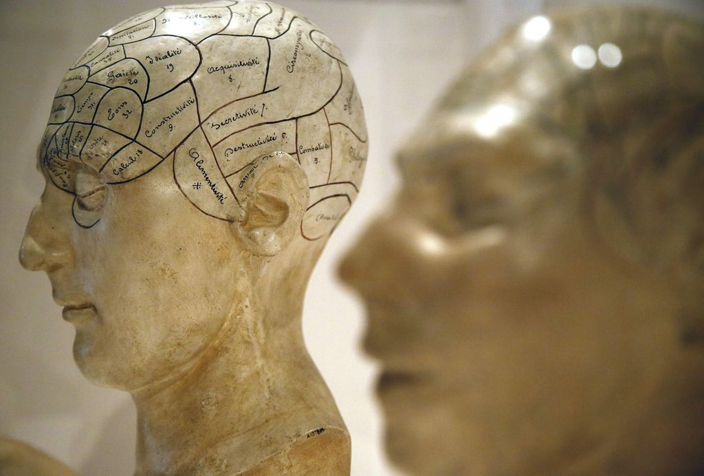 Razvoj možganov teži k človekovemu udobju