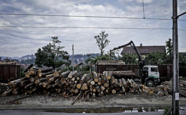 Fotozgodbe Železnica 31 / Suhadolnik