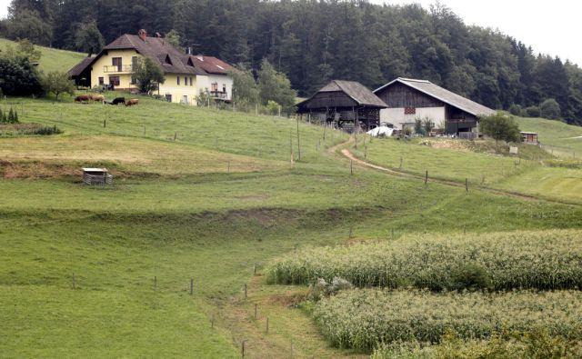 Eko kmetija Zabukovec. V Gabrijah 21,7,2014
