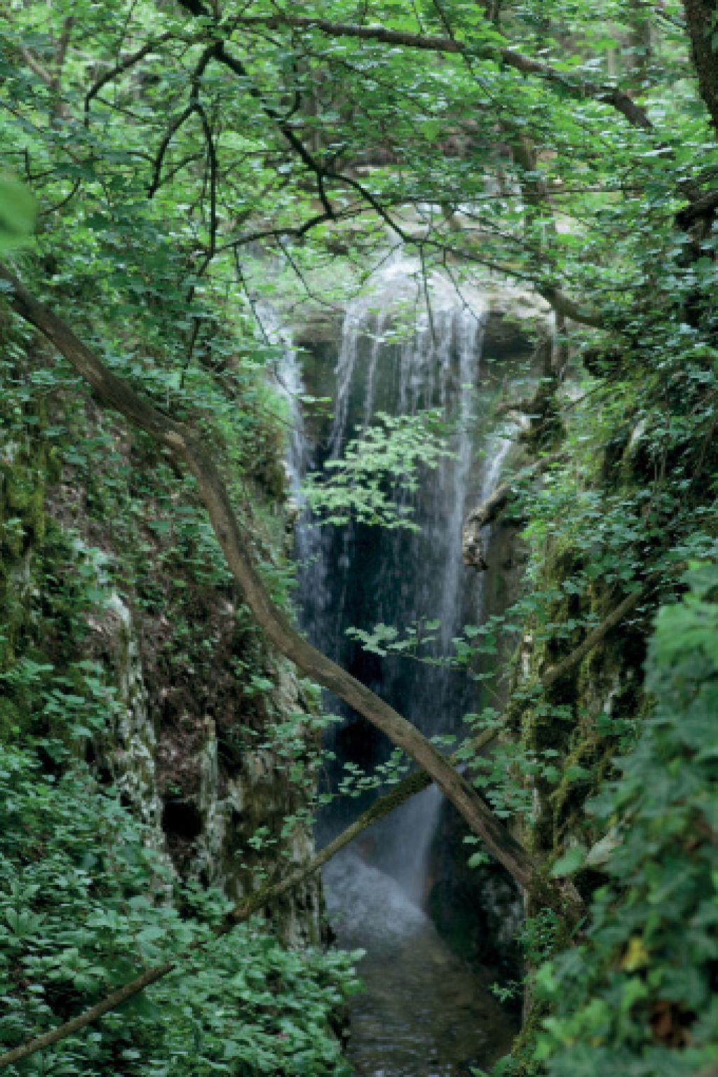 Nedeljski izlet: Ociska brezna